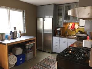 Kitchen Demo – Michael Schilling Design
